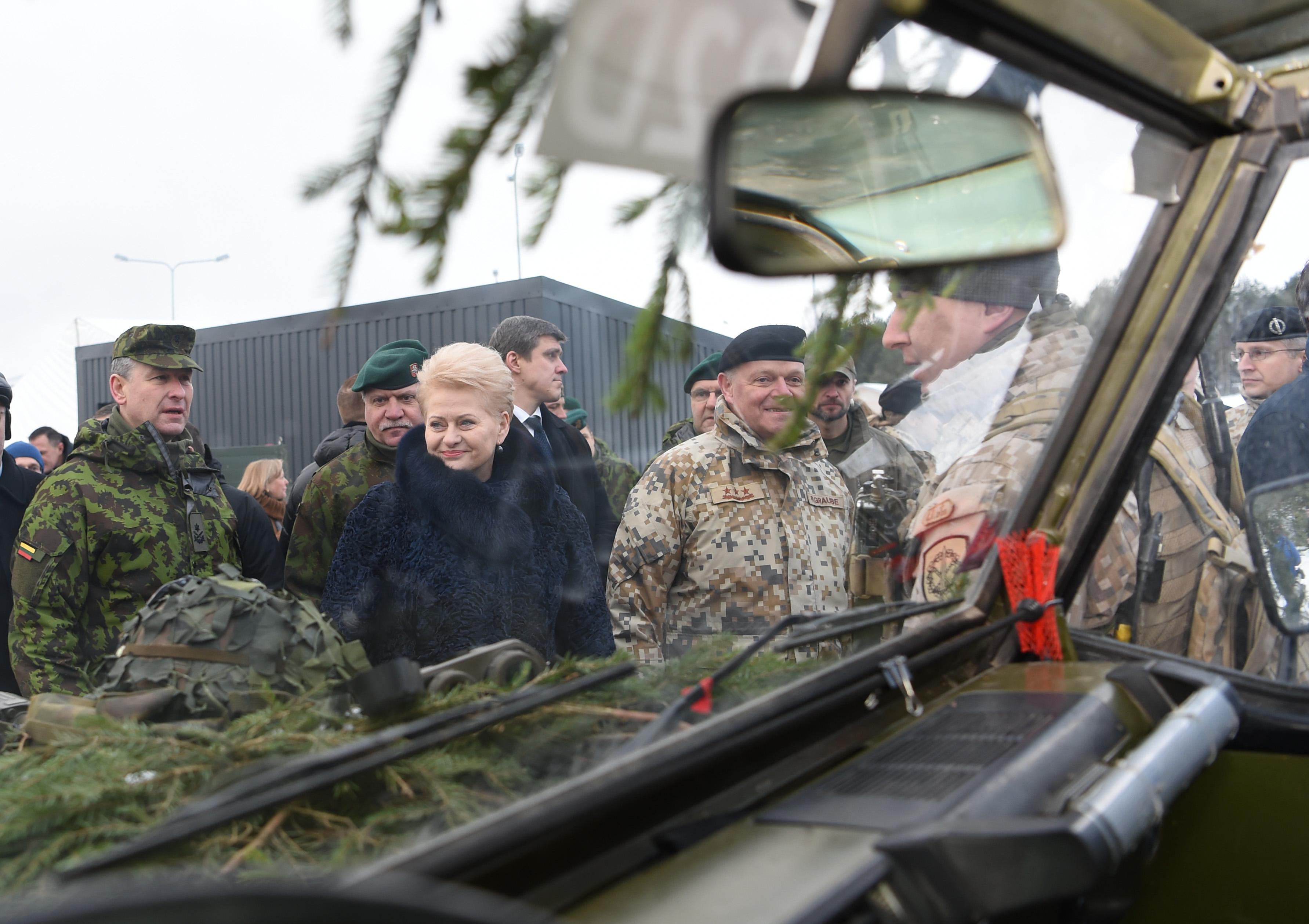 Завершаются международные учения НАТО «Железный меч»