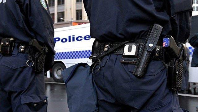 Безопасность вВене: наНовый год милиция будет раздавать мобильные сигнализации