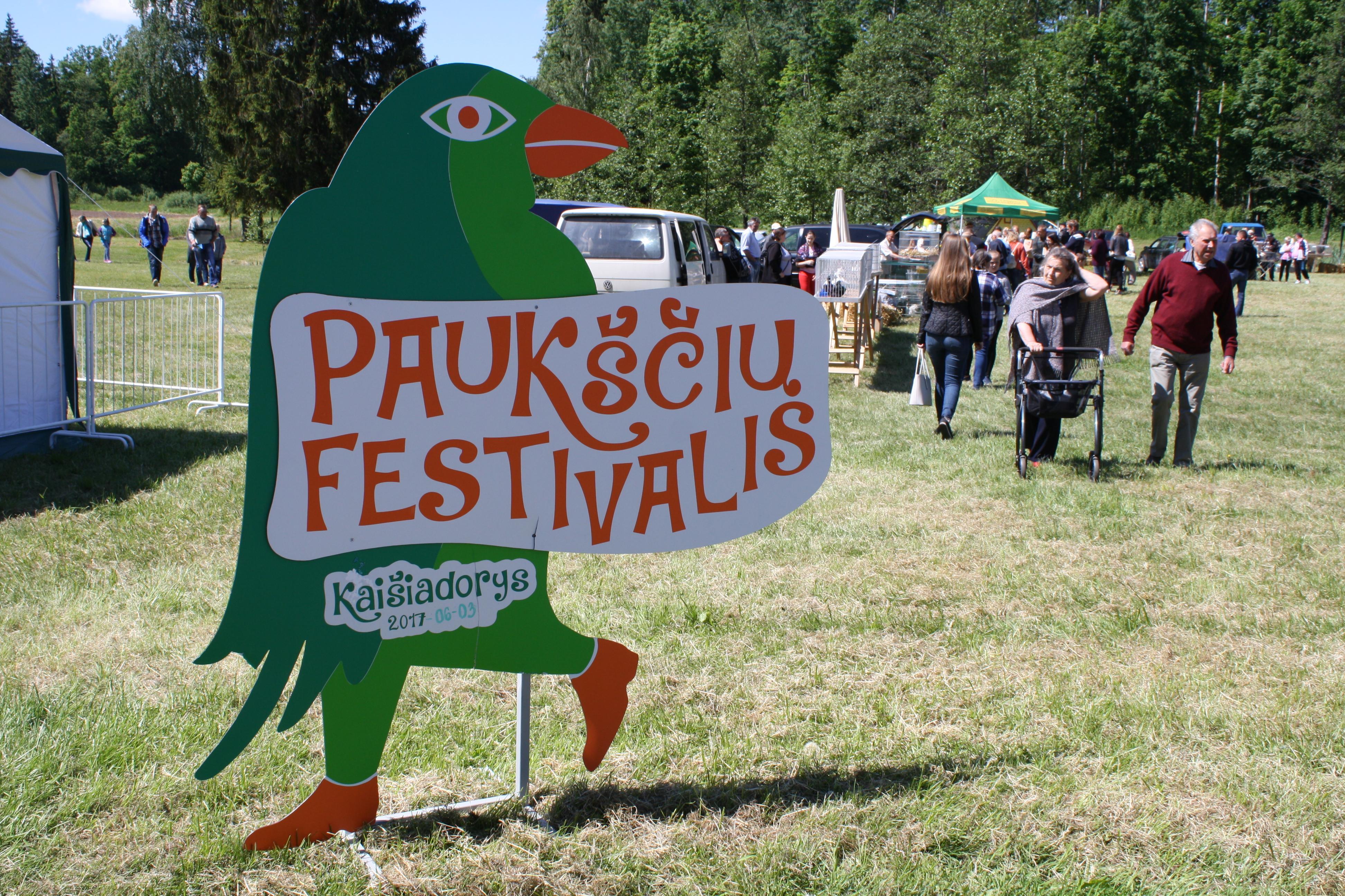 Птичий фестиваль: яйца и шакотисы