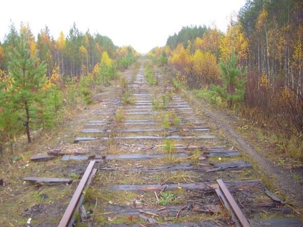 """Украинский министр анонсировал исторический поезд """"пяти столиц"""""""