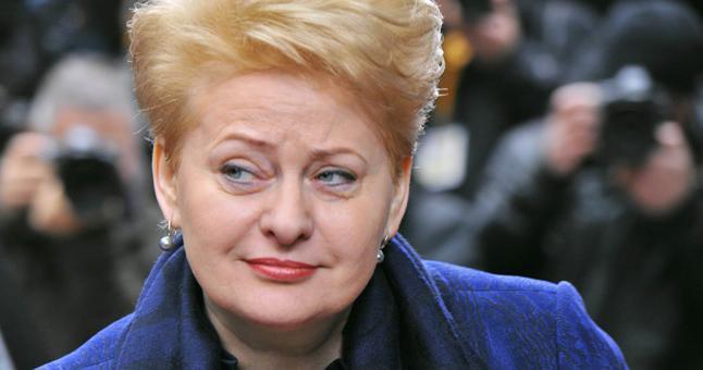 АЭС вОстровце может быть применена против Балтии— «Ядерная» Грибаускайте