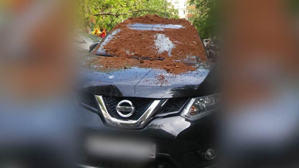 На вседорожный автомобиль москвича вывалили кучу навоза