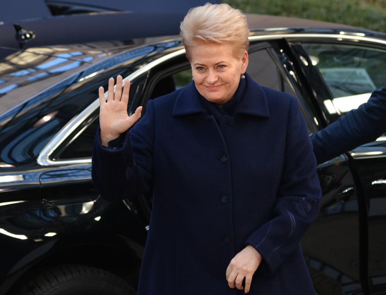 Белоруссия потребовала от Литвы объяснений по поводу заявлений Грибаускайте