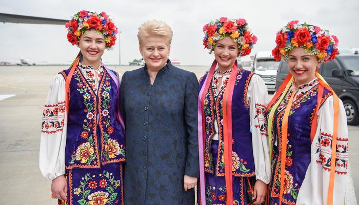 Словами обугрозе президент Литвы зарабатывает себе популярность— МИД Республики Беларусь