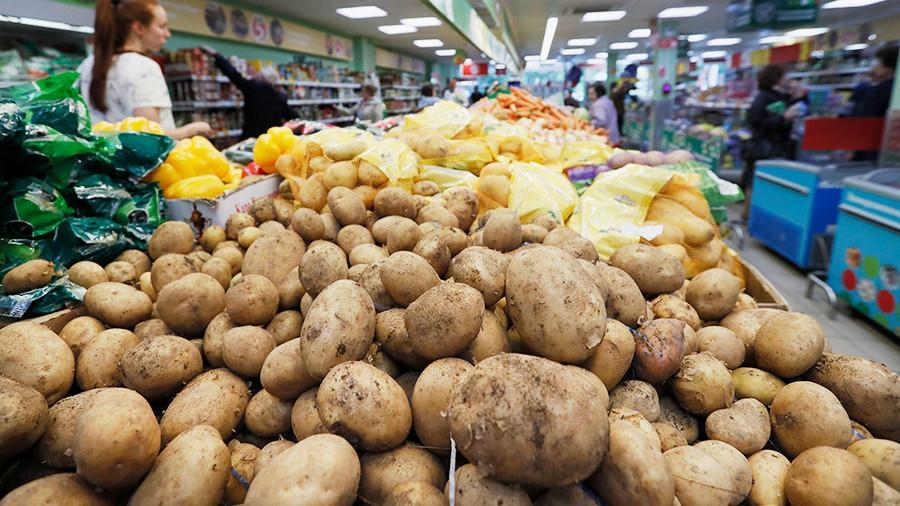 Холодное лето повысило цены на овощи в России