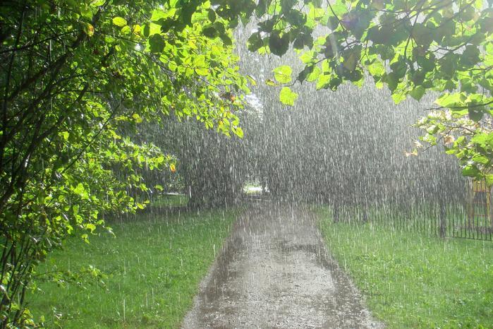 Дожди продолжат поливать Литву