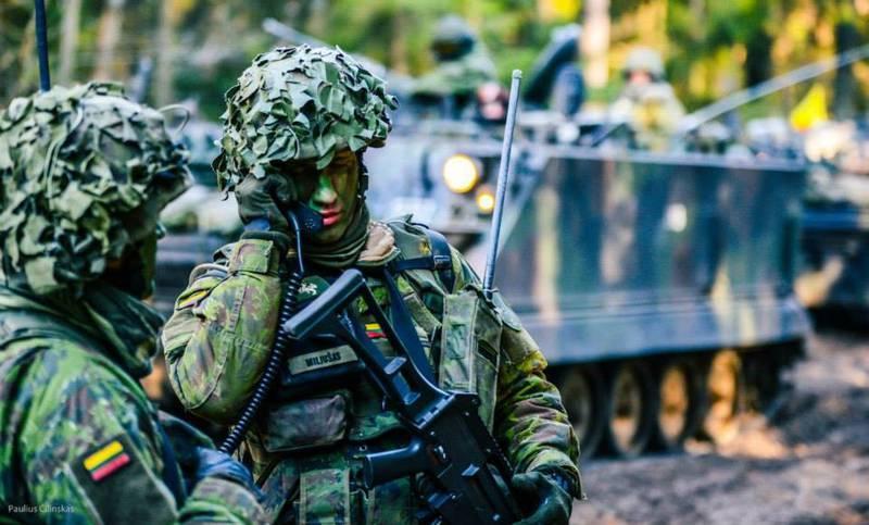 Литовские военные смогут бороться с джихадистами