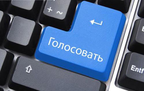 Кабмин Литвы обсудит систему голосования по интернету