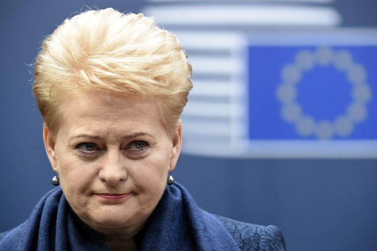 Д. Грибаускайте в Брюсселе обсудит вопросы энергетики, торговли с США