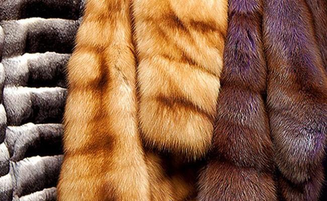 Запрет продажи меха возмутил его продавцов в США