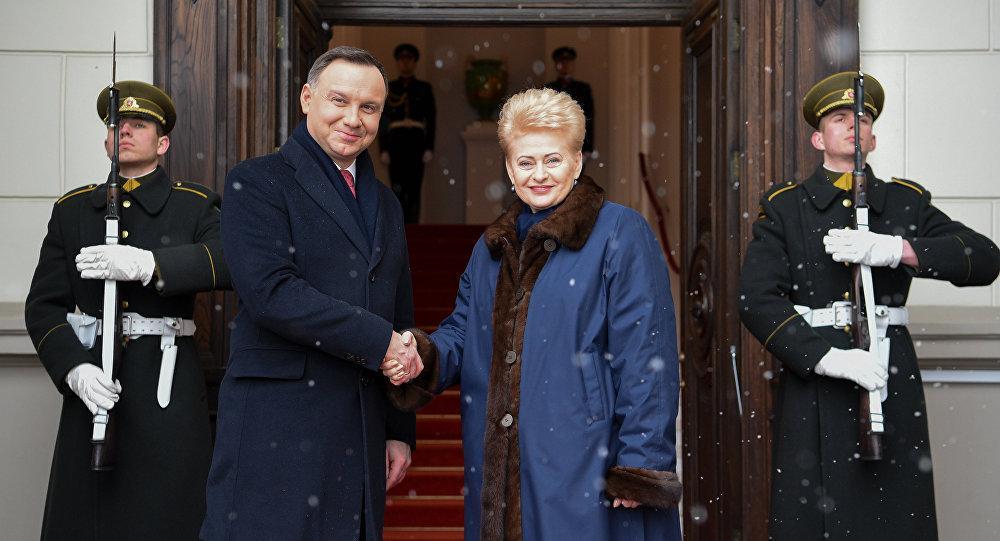 Президенты Литвы и Польши отказались поздравлять Путина с переизбранием