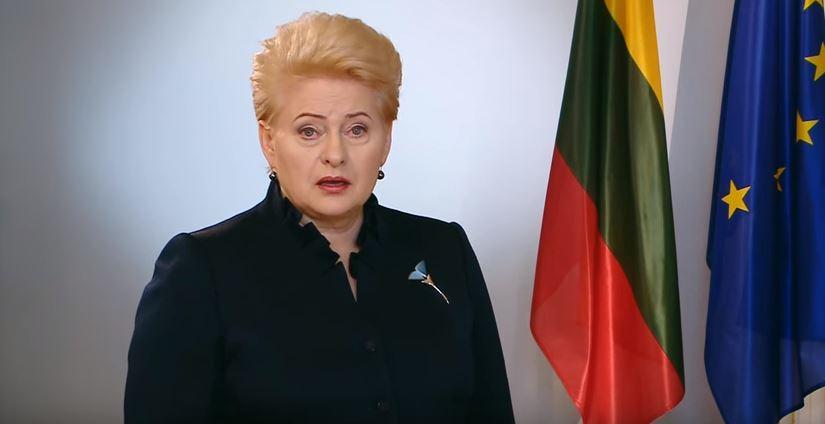Президент Литвы предлагает отказаться от выдвижения партиями членов ГИК