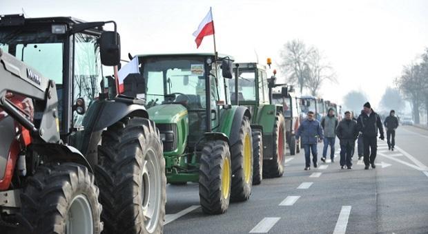 Польские аграрии требуют наладить экспорт их продукции в Россию